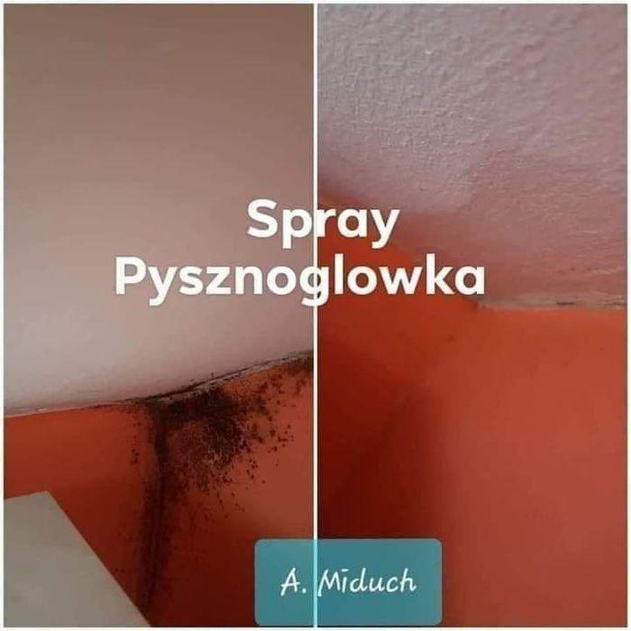 Spray Pysznogłówka Poznań - image 1