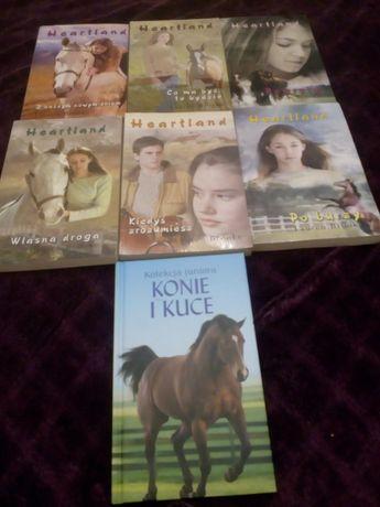 Heartland seria I konie i kuce. Książki opowiadania o koniach.