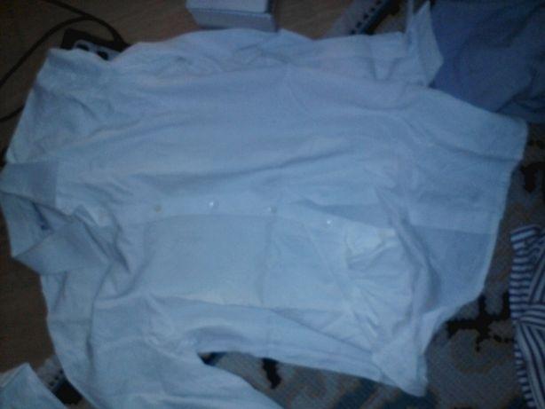 Camisas Savoy Guild , Nunes Correa (rua augusta , lisboa) e Ralph Laur