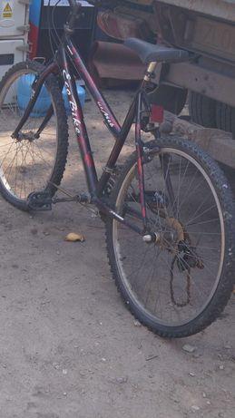 Rower górski Eco Bike koła 26