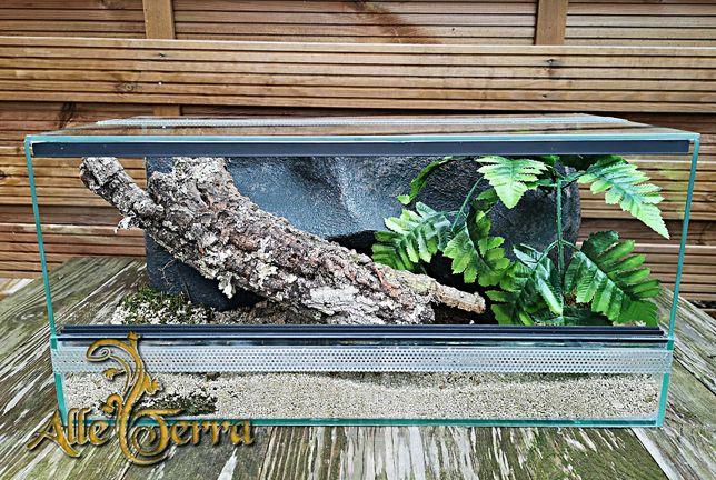 Terrarium szklane z wystrojem 50x24x24 cm.