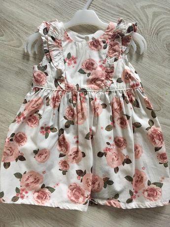 Sukienka kwiaty h&m jak newbie róże 68 falbanka