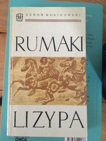 Zenon Kosidowski - Rumaki Lizypa
