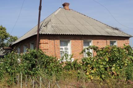 Продам будинок в с.Китайгород Царичанського району Дніпропетровської о