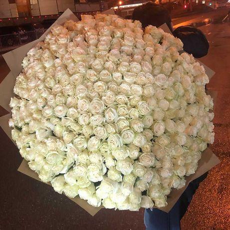 Розы. Букет 151 роза. Доставка цветов. Цветы Днепр, подарок девушке