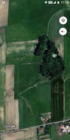 Sprzedam ziemie, grunty rolne 17ha