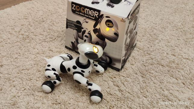 Интерактивная игрушка Zoomer Dalmatian оригинал