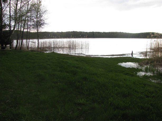 Działka z własną ( Bezpośrednią ) linią jeziora
