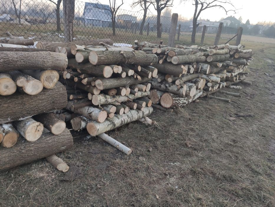Sprzedam drewno opałowe Rydułtowy - image 1