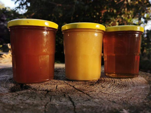 Miód pszczeli Pasieka Dębowianka prosto od pszczelarza