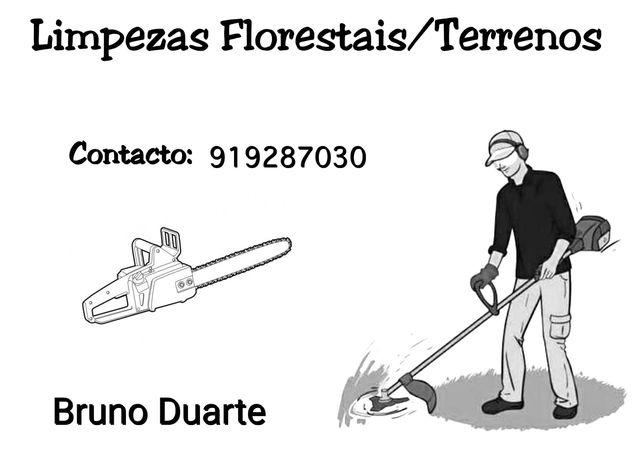 Limpezas Florestais/Terrenos