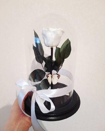 Роза в Колбе +(Коробка/Гравировка/Лепестки).Подарок на 14 февраля.
