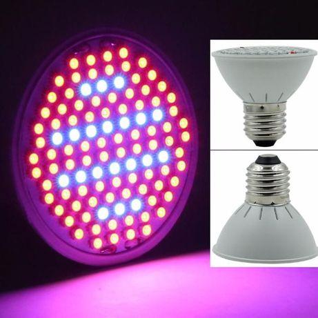 Lampada led para estufa 10w grow light (crescimento e floração)