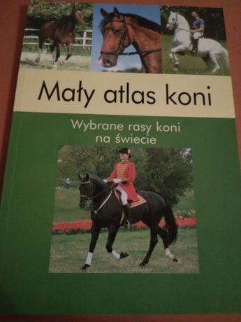 Mały atlas koni