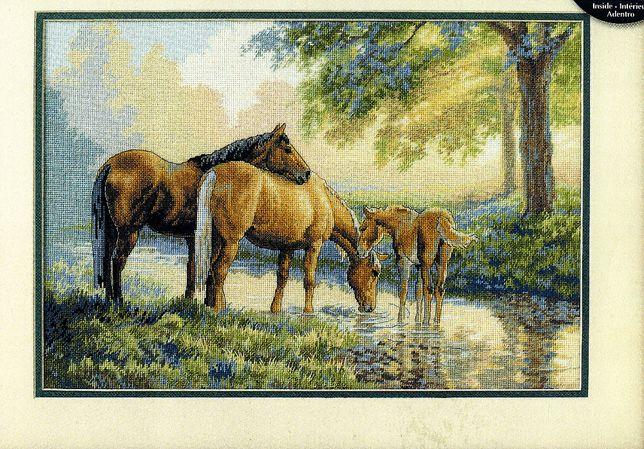 Продам копию схемы Dimensions 35174 Лошади у истока