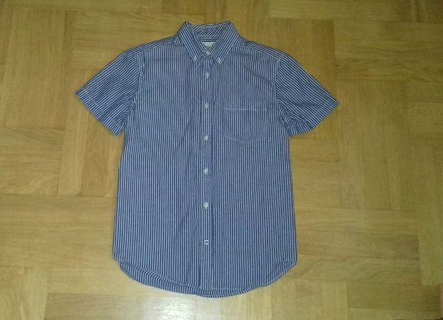 164-170 GAP niebieska koszula wizytowa krótki rękaw męska