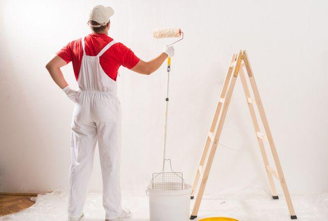 Malowanie Mieszkań,Domów,Ukladanie Paneli WOLNE TERMINY