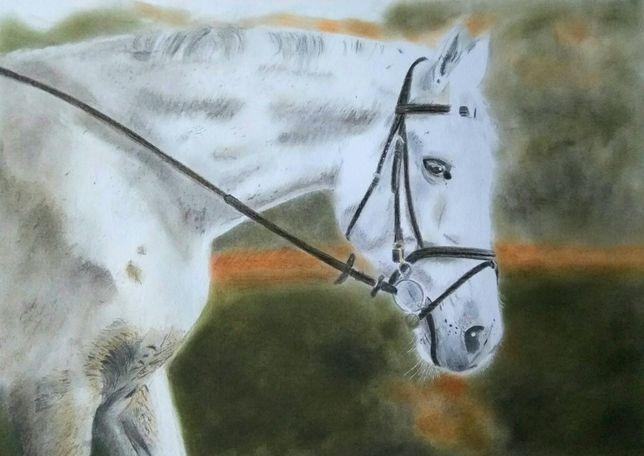 Portret konia koń pastel pastele suche obraz rękodzieło