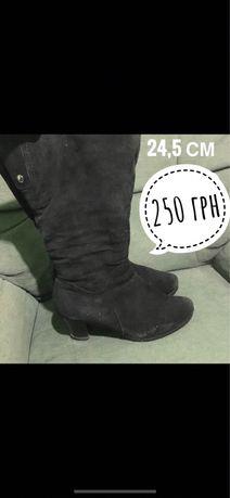 Черные сапоги на маленьком каблуке, натуральный замш