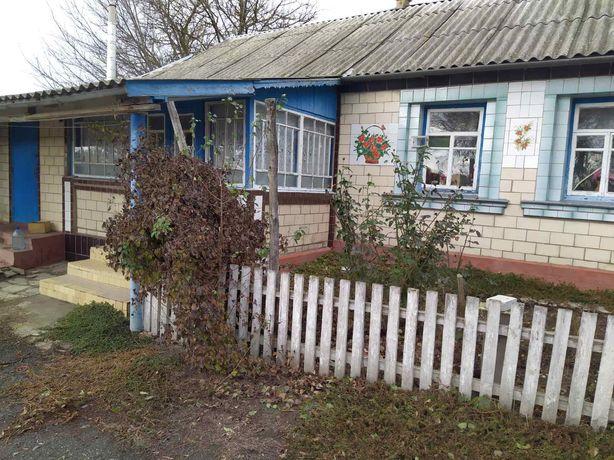 с.Высокое (Киевская обл) Теплый ухоженный дом