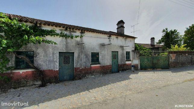 Quintinha T3 Venda em Sarzedas,Castelo Branco