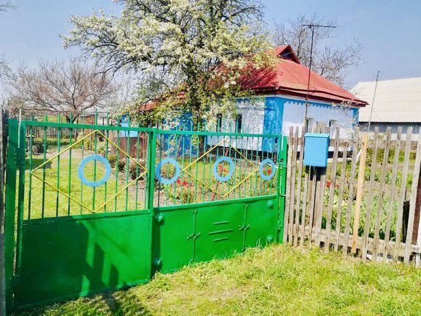 Продам дом с участком 50 соток в с. Пасечники, Решетиловского р-на.