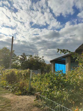 Продам дом село Троицкое