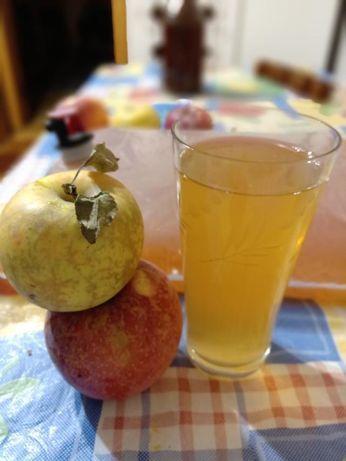 Яблочный сок прямого отжима концентрат