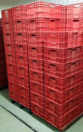 Pojemniki Euro spożywcze skrzynki plastikowe ażurowe