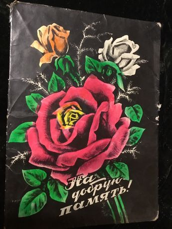 Розы фото картина СССР