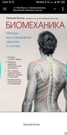 Биомеханика Е. Блюм