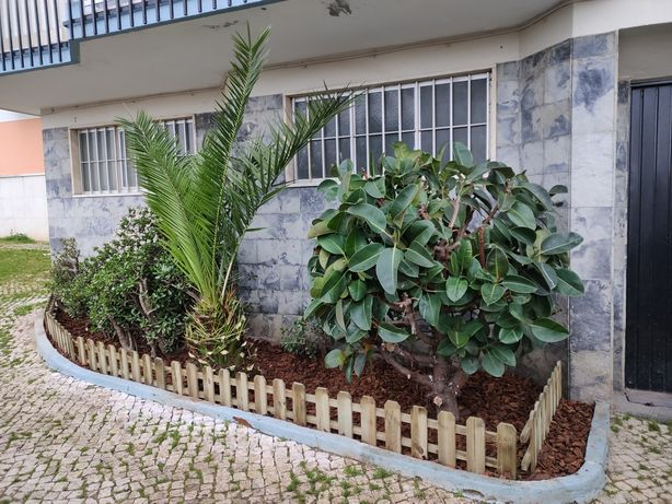 Jardim manuntenção e limpeza florestal
