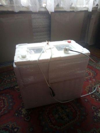 инкубатор домашний для инкубации яиц
