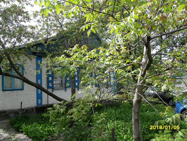 Дом с участком с. Волосское