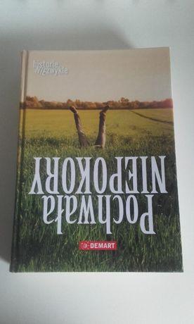 Pochwała niepokory, historie niezwykłe książka o różnych osobach