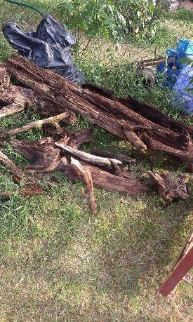 korzenie, pnie do ogrodu