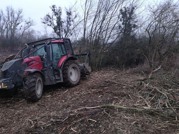 Karczowanie Mulczowanie sadów wylesienia rekultywacja terenu wycinka
