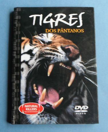 DVD - Tigres os Pântanos