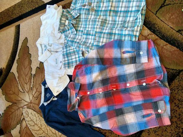Ubrania 110-116 dla chłopca