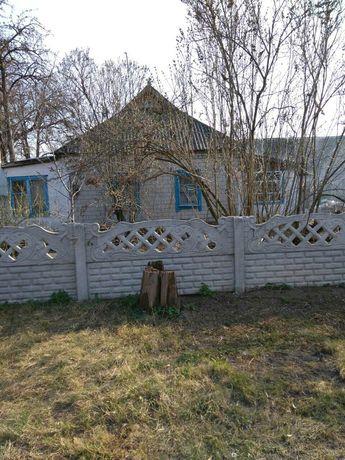 Дом.с.Михайловка царичанского района