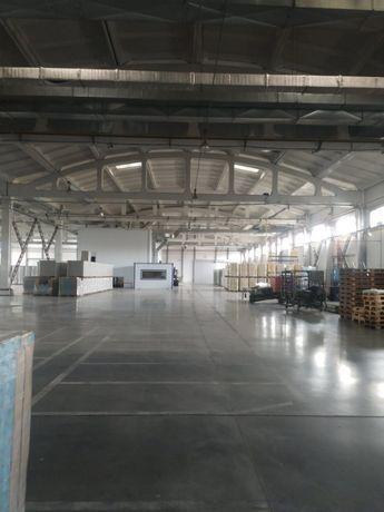 Бровары производство/склад 4000 м кв. Без%