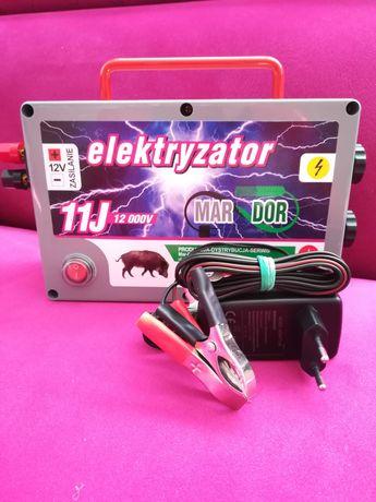 Pastuch elektryzator na DZIKI