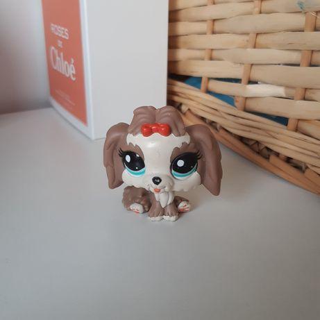 Littlest pet shop piesek shih tzu lps