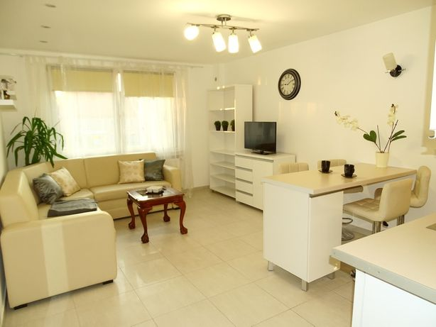 Mieszkanie 2 - pokojowe do wynajęcia