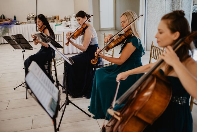 Skrzypce, śpiew, organy, harfa, gitara, saksofon -muzyka na ślub