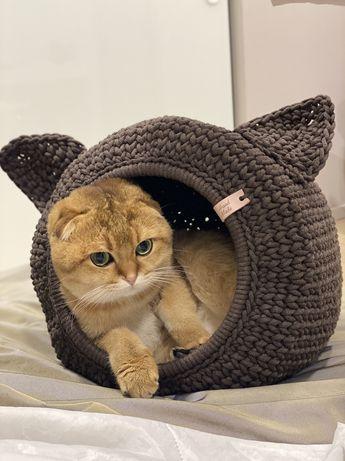 Домик для кота кошки
