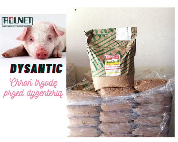 Dysantic , zapobiega dyzenterii oraz biegunką 2kg