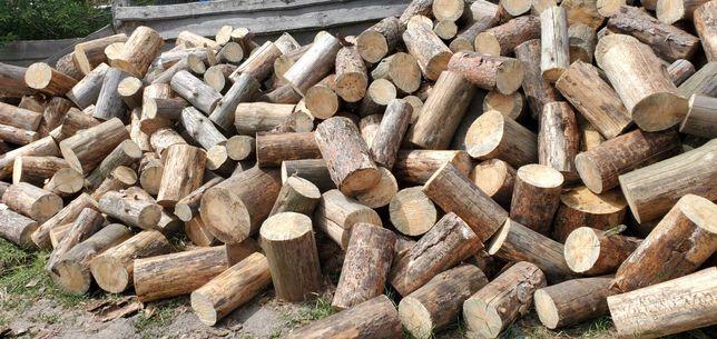 продам дрова Сосна Дуб граб