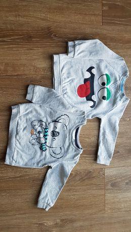 Bluzy dla chłopca z firmy Pepco