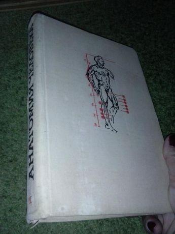 Анатомия человека, 1965г.